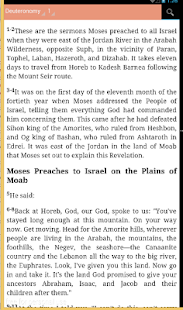 THE MESSAGE BIBLE - screenshot