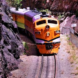 train by Kristy Shamburg - Transportation Trains ( colorado, train, yellow )