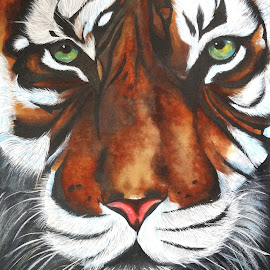 Royal Bengal Tiger by Suman Sen - Painting All Painting