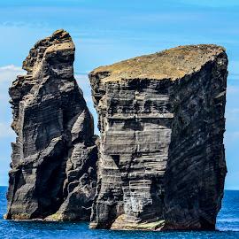 Skalne čeri by Bojan Kolman - Nature Up Close Rock & Stone