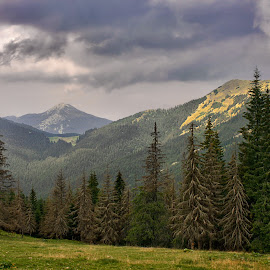 by Alexander Kaplya - Landscapes Mountains & Hills