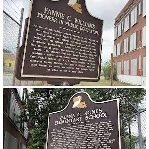 Fannie C WilliamsPioneer in Public Education As one of New Orleans' premier educators in the first half of the twentieth century, Fannie C. Williams steered this school through decades of challenge ...