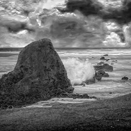 Seal Rock 2 B&W by Joseph Vittek - Black & White Landscapes