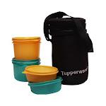 Tupperware Executive Lunchbox
