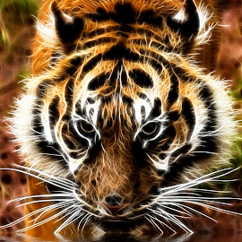 Tiger drinking by Steven Stamford - Digital Art Animals ( big cat, carnivore, amur tiger, tiger, amur, fractal, panthera tigris altaica, fractal tiger,  )
