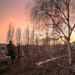 sunset journey by Mohd Aidy Faizal Johari - Landscapes Sunsets & Sunrises