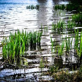 Lake Bayer (Croatia,Fužine) by Eric Brajković - Landscapes Waterscapes ( water, waterscape, croatia, lake )