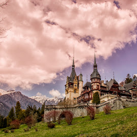 Peles Castle by Panait Sorin - Buildings & Architecture Public & Historical ( canon, castle )