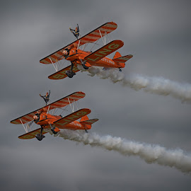 Wing Walkers by Sarah Tregear - Transportation Airplanes ( flying, orange, wing walkers, acrobat, breitling, planes )