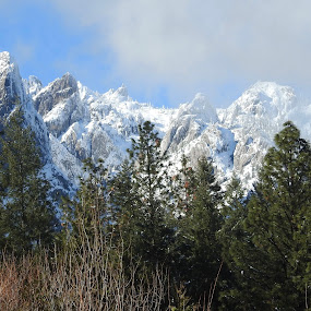 Refreshing by Sherry Gardner - Landscapes Mountains & Hills ( castella fishing, camping, pacific cres trail, root creek falls trail, soda creek, hiking, castle crags )