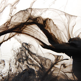 Flowing Figures by Marta Gaspar - Abstract Macro