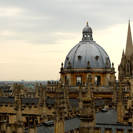 View from the Sheldonian Theatre by Vanda Kopányi - City,  Street & Park  Skylines ( sheldonian theatre, oxford, view, library, radcliffe camera, architecture )