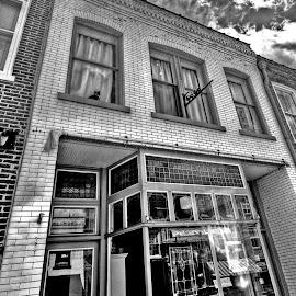 Fluffy in the Window by Derrill Grabenstein - City,  Street & Park  Markets & Shops