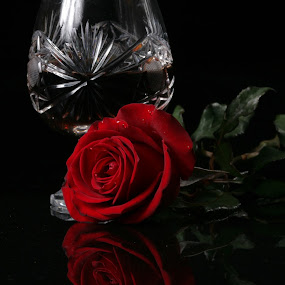 Red Rose and glass cup by Cristobal Garciaferro Rubio - Food & Drink Alcohol & Drinks ( rose, glass cup, roses, flowers, flower )