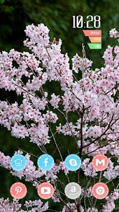 Beautiful blooming peach theme - screenshot
