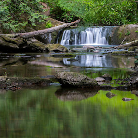 by Clement Stevens - Landscapes Waterscapes ( whatcom falls )