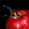 apple and ring.jpg