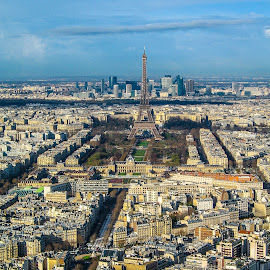 Paris by Andrew Moore - City,  Street & Park  Skylines (  )