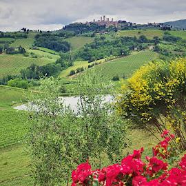 San Gimignano by Jiri Cetkovsky - City,  Street & Park  Skylines ( toscana, san gimignano, town, landscape, italy, historic, city )