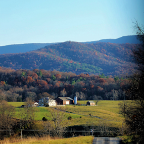Country Road by Leah Zisserson - Landscapes Mountains & Hills ( farm, hills, mountains, virginia, road, country,  )