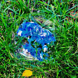 Bubble in the Grass by Debbie Squier-Bernst - Abstract Patterns (  )
