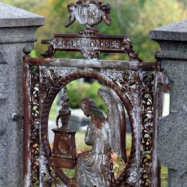 Guarding gate by Janet Smothers - City,  Street & Park  Cemeteries
