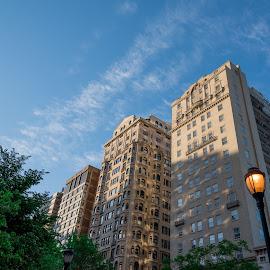 The Rittenhouse Sky by Tomek Karasek - City,  Street & Park  Neighborhoods ( sky, residential, blue, rittenhouse square, philadelphia, morning )