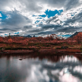 Fall in Norway by Benny Høynes - Landscapes Prairies, Meadows & Fields ( water, colors, fall, landscapes, september, norway )