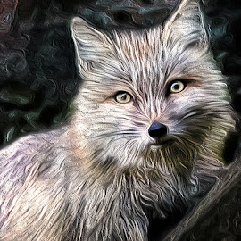 by Renos Hadjikyriacou - Digital Art Animals
