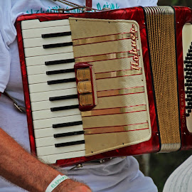 Hohner Accordion by Michiale Schneider - Artistic Objects Musical Instruments ( music, accordion, hands, keys, instrument )