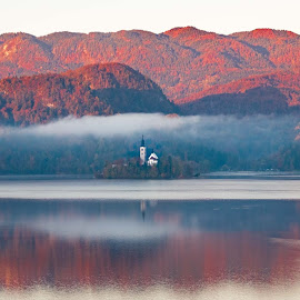 Lake Bled Slovenia by John Reinhard - Landscapes Waterscapes ( autumn, slovenia, bled, reflections, lake )