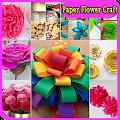 Download Paper Flower Craft Tutorial APK for Android Kitkat