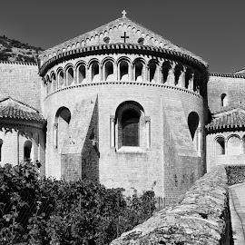 L'Abbaye Saint-Sauveur de Gellone  by Johannes Oehl - Buildings & Architecture Places of Worship ( old, languedoc-roussillon, french, architecture, heritage, historic, b/w, religion, ancient, religious symbol, lovely, pastoral, abbey, structure, church, vine, world heritage, worship, unesco, roof, european, season, monastery, brush, wall, cross, plant, monochrome, b&w, europe, black and white, brick, grapevine, romance, pretty, idyllic, august, france, construction, 11th century, quaint, building, abbey of gellone, peaceful, middle ages, black & white, beautiful, romantic, scenic, saint-guilhem-le-désert, black&white, history, vine stock, romanesque, summer, bow, public, dark age, medieval, unesco world heritage, world )