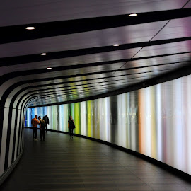 A Stroll in the Lights by DJ Cockburn - Buildings & Architecture Other Interior ( london, britain, commuter, railway station, interior, pastel, eurostar, uk, walking, design, architecture, england, electric light, transport, st pancras station, people, transportation, subway, allies & morrison architects, underground, king's cross station, pedestrian, travel, commute, tunnel )