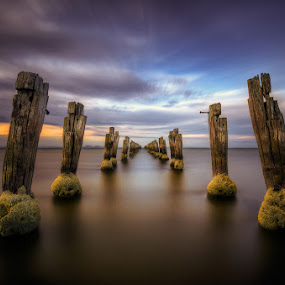 The Way by Lincoln Harrison - Landscapes Waterscapes