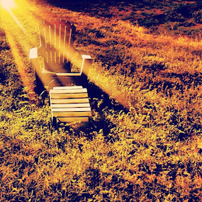 by Jamie Myers - Instagram & Mobile Instagram ( sunlight, chair, lawn )