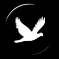 [substratum] Magpie Reborn APK for Bluestacks
