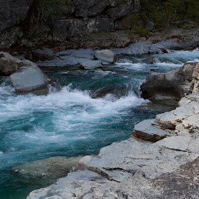 Raging River in Glacier National Park, Montana by Debbie Salvesen - Landscapes Waterscapes ( water, mcdonald falls, outdoor photography, waterscape, june, 2015, waterfall, road to the sun, kalispell, wilderness, national park, nature, montana, river, glacier national park, , #GARYFONGDRAMATICLIGHT, #WTFBOBDAVIS )