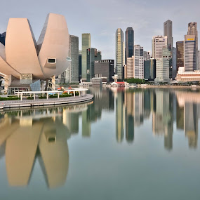Reflections by Tim Teo - Buildings & Architecture Other Exteriors