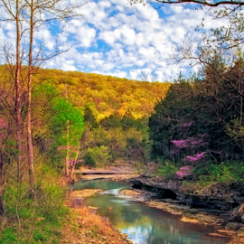 Spring Afternoon by Michael Buffington - Landscapes Forests ( orange, stream, colorful, green, yellow, spring, environment, magenta, nature, color, blue, creek, natural )