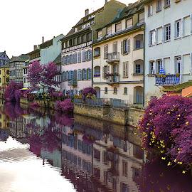 strasbourg by Christian Heitz - City,  Street & Park  Neighborhoods