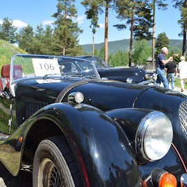 car expo by Ester Ayerdi - Transportation Automobiles ( car, classic car, vintage, cars, classic, norway,  )
