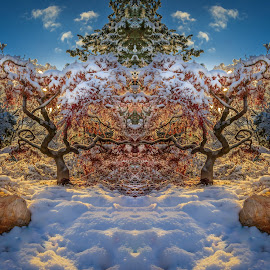 Maple Monster by Brandon Montrone - Digital Art Things ( abstract, reflection, art, fine art, landscape, leaves, maple, mirror, backlit, winter, tree, snow, digital art, symmetry, sunrise )