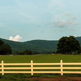 Fence n Hill by Kenneth Rogers - Landscapes Mountains & Hills