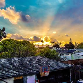 Light Rays by Rachel Santellano - City,  Street & Park  Neighborhoods ( san jose, california, weather, view, sun )