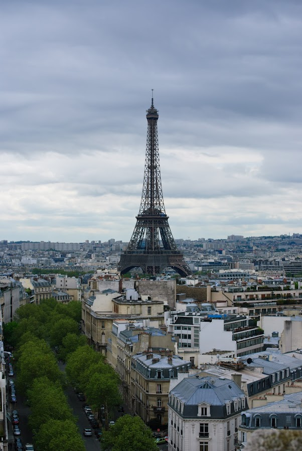 Looking out over Paris by David Harris - City,  Street & Park  Vistas ( paris, europe, france, cityscape, travel, landscape )