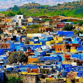 The Blue City by Doug Hilson - City,  Street & Park  Vistas ( vista, blue houses, india, jodhpur )