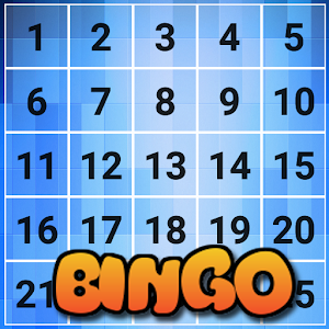 Bingo Game:2 Player Game