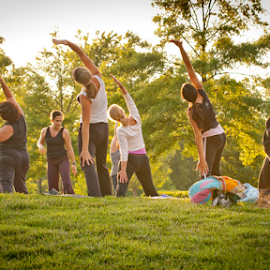 Yoga Class in the Park by Myra Brizendine Wilson - Sports & Fitness Fitness ( fitness, fitness and health, exercise, yoga in the park, yoga, yoga class )