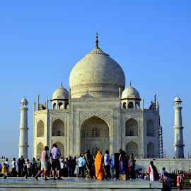 Taj Mahal  by Asif Bora - Buildings & Architecture Public & Historical